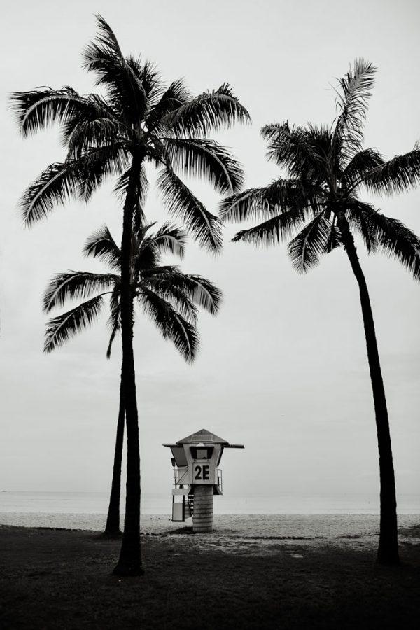 Print Honolulu